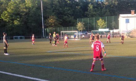 U13: Sieg gegen Alemannia Haibach
