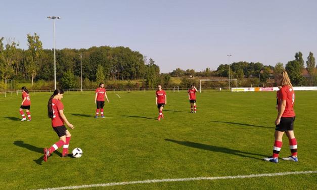 C2-Juniorinnen: In Gollhofen 3:0 gewonnen